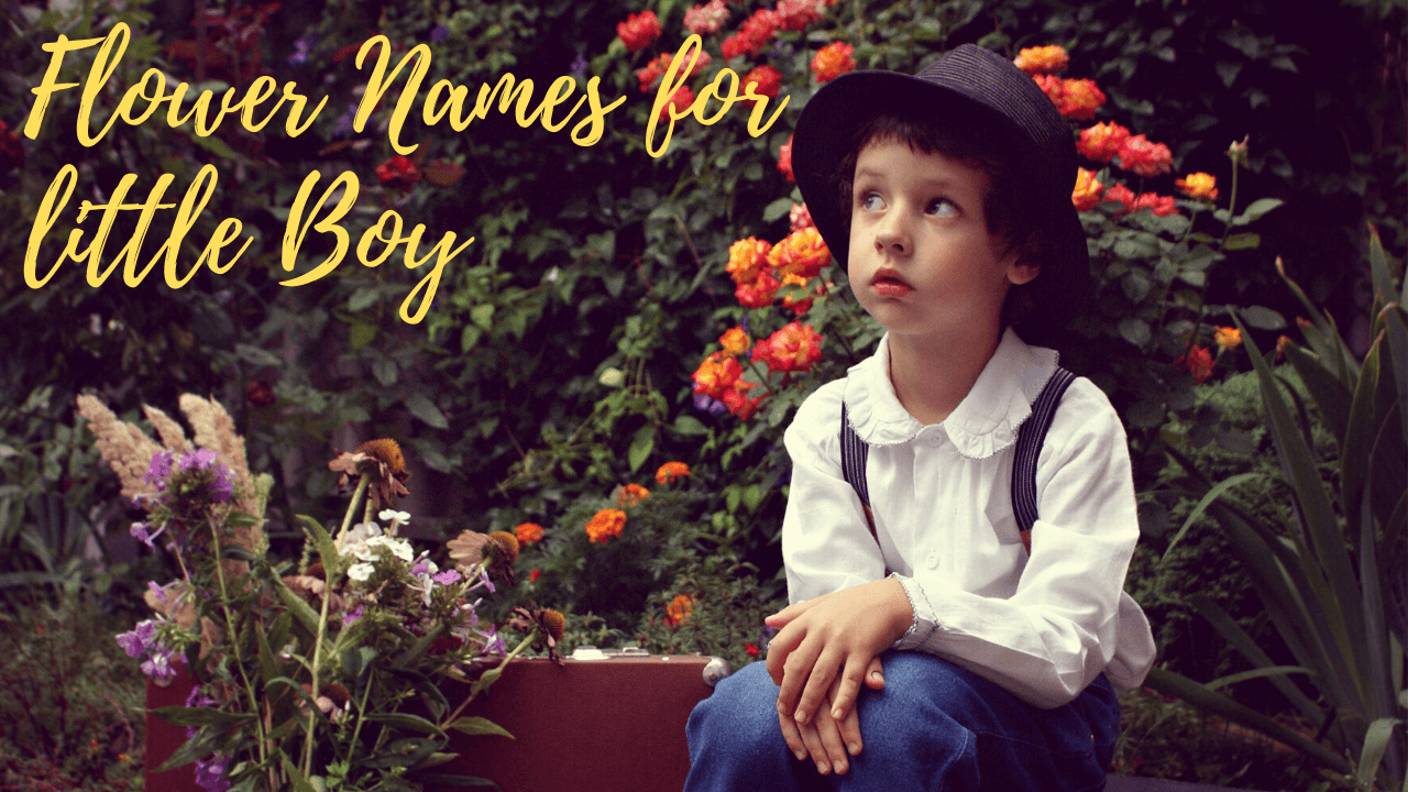 Plant Names for Boys